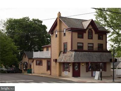 Doylestown PA Commercial For Sale: $1,650