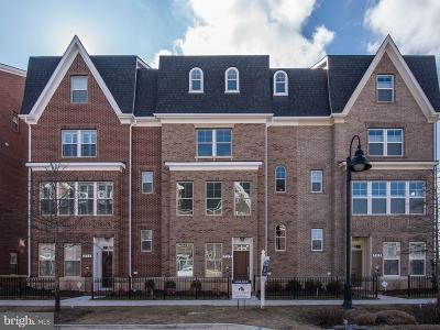 Montgomery County Townhouse For Sale: 307 Crown Park Avenue