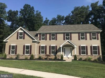 Pottstown Single Family Home For Sale: 113 Florence Drive