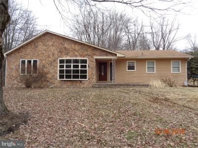 Hopewell Single Family Home For Sale: 176 Pleasant Valley Road