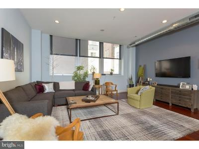 Philadelphia Single Family Home For Sale: 1101 Locust Street #3G