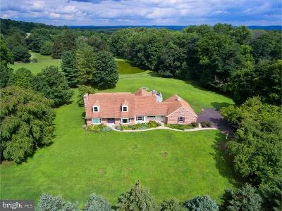 New Hope Single Family Home For Sale: 2992 Comfort Road