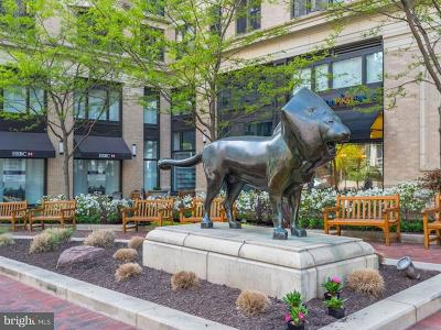 Bethesda Condo For Sale: 7710 Woodmont Avenue #1013