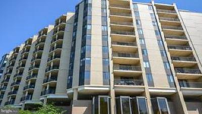 Chevy Chase Condo For Sale: 4242 East West Highway #1112