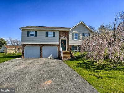 Shippensburg Single Family Home For Sale: 101 Independence Drive