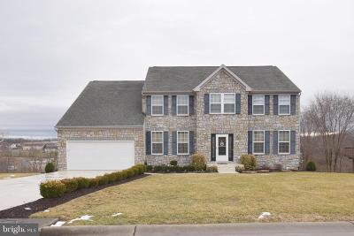 Rockingham County Single Family Home For Sale: 247 Harding Drive