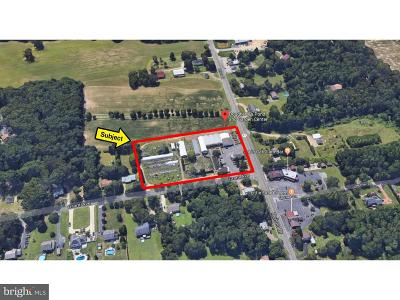 Franklinville Commercial For Sale: 3102 Delsea Drive