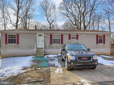 Enola Single Family Home For Sale: 5 Sportsman Road