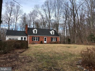 Mclean Single Family Home For Sale: 910 Chinquapin Road
