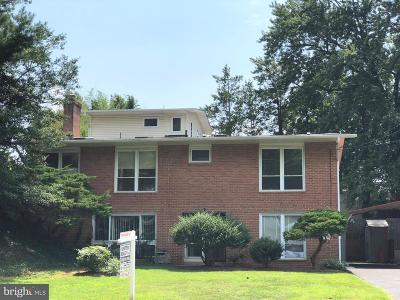 Fairfax County Single Family Home For Sale: 6709 Old Chesterbrook Road