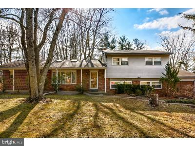 Princeton Single Family Home For Sale: 13 Glenview Drive