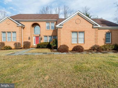 Manassas Single Family Home For Sale: 7856 Knightshayes Drive