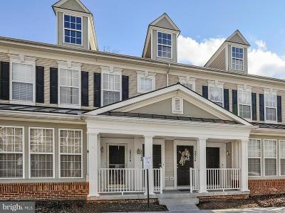 Ashburn Townhouse Active Under Contract: 20250 Macglashan Terrace