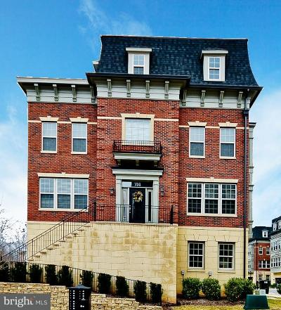 Prince Georges County Townhouse For Sale: 731 Sentry Square