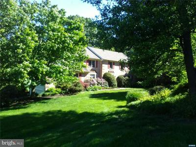 Hockessin Single Family Home For Sale: 2 Spring Meadow Lane