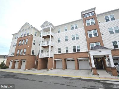 Aldie Condo For Sale: 41895 Cathedral Valley Square #203