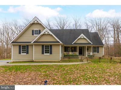 Atlantic County, Cumberland County, Gloucester County Single Family Home For Sale: 396 Russell Mill Road