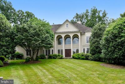 Loudoun County Single Family Home For Sale: 11387 Highbrook Court
