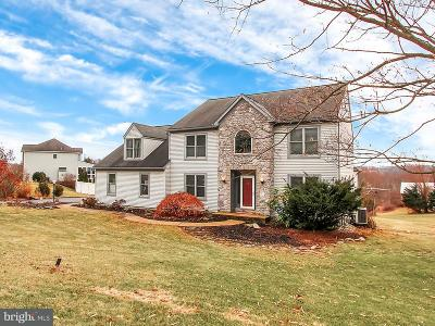 Dallastown Single Family Home For Sale: 700 Windrush Drive