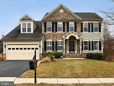 Broadlands Single Family Home For Sale: 21834 Inglewood Court