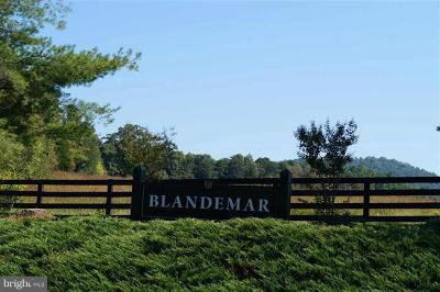 Albemarle County Residential Lots & Land For Sale: White Eagle Lane