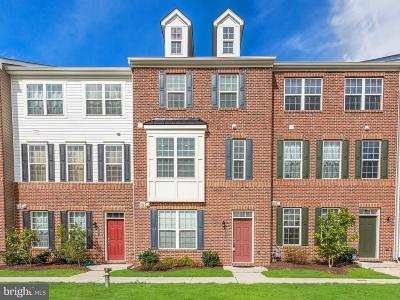 Silver Spring, Wheaton Townhouse For Sale: 3513 Woodlake Drive