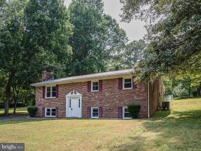 Fredericksburg City, Stafford County Single Family Home For Sale: 1085 Lakeview Drive