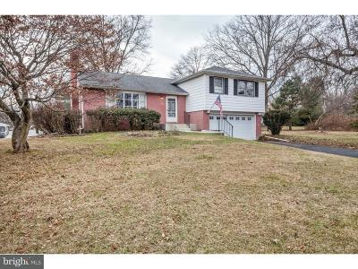 Chalfont Single Family Home For Sale: 233 Park Lane