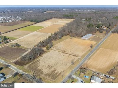 Vineland NJ Farm For Sale: $300,000