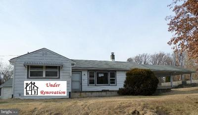 York Haven Single Family Home For Sale: 1495 Cly Road