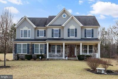 Fairfax County, Stafford County, Prince William County Single Family Home For Sale: 43 Janney Lane