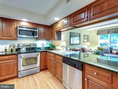 West Chester Townhouse For Sale: 251 Chatham Way