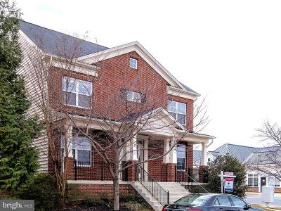 Clarksburg Single Family Home For Sale: 13112 Brewers Tavern Terrace