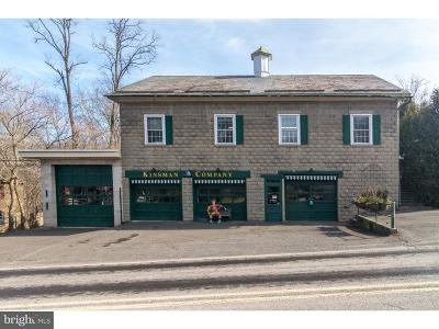 Bucks County Commercial For Sale: 4961 River Road #2