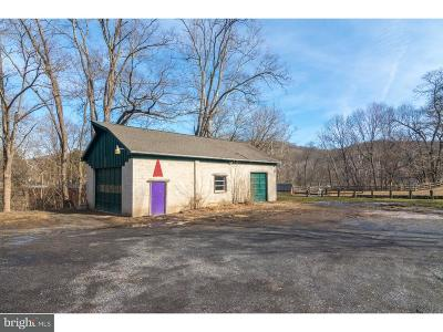 Bucks County Commercial For Sale: 4961 River Road #REAR