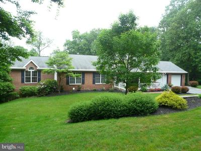 Mohnton Single Family Home For Sale: 20 Pinnacle Drive