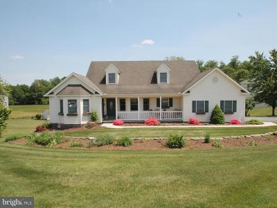 Etters Single Family Home For Sale: 340 Spring Run Court