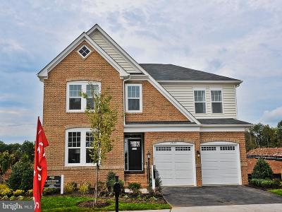 Loudoun County Single Family Home For Sale: 25284 Abney Wood Drive