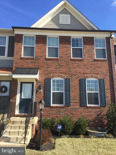 Bristow, Nokesville Townhouse For Sale: 9251 Dawkins Crest Circle