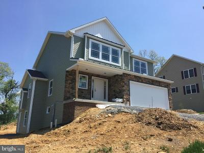 Shippensburg Single Family Home For Sale: 104 Feather Drive
