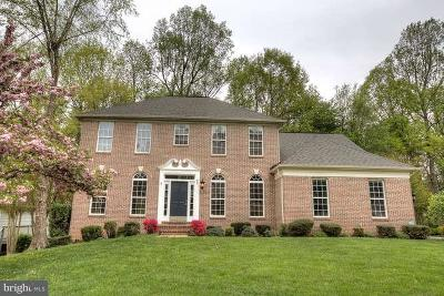Stafford County Single Family Home For Sale: 48 Monument Drive