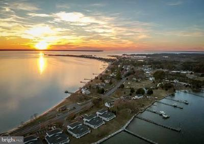 Calvert County, Saint Marys County Single Family Home For Sale: 17194 Piney Point Road