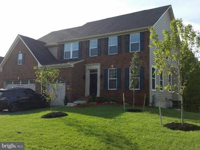 Upper Marlboro Single Family Home For Sale: 13308 Mary Bowie Parkway