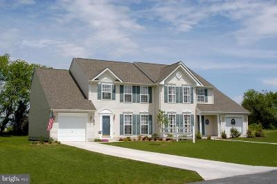 Elkton Single Family Home Under Contract: 16 Vince