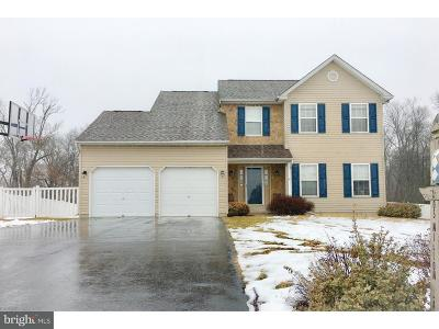 Gilbertsville Single Family Home For Sale: 105 Willow Lane
