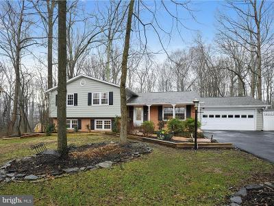 Fairfax County Single Family Home For Sale: 11427 Vale Spring Drive