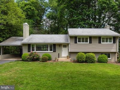 Fairfax County Single Family Home For Sale: 8518 Chapel Drive