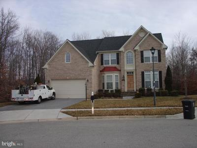 Accokeek Single Family Home For Sale: 16800 Blue Indigo Court