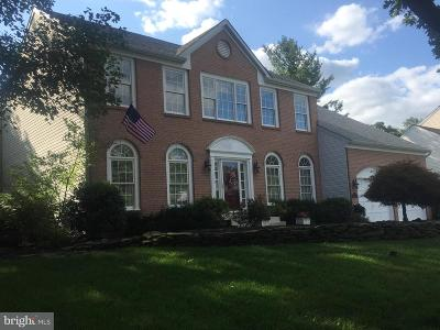 Fairfax County Single Family Home For Sale: 13117 Willow Edge Court