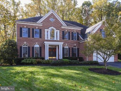 Silver Spring Single Family Home For Sale: 303 Myers Manor Drive